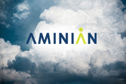 Aminian Business Services
