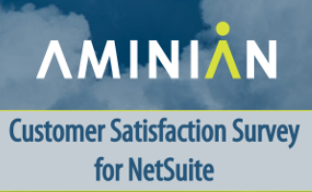 Customer Satisfaction Survey for NetSuite